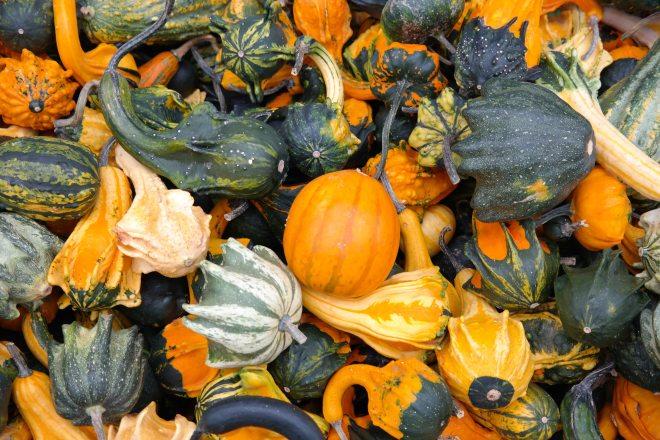 food-fresh-produce-healthy-62286